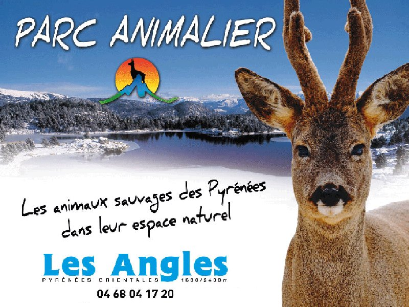 Parc animalier des Angles Isard
