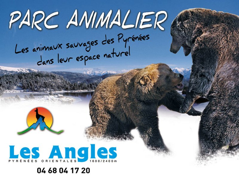 Parc animalier des Angles Ours
